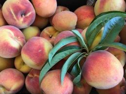 Peach Pie 2 Peaches.jpg